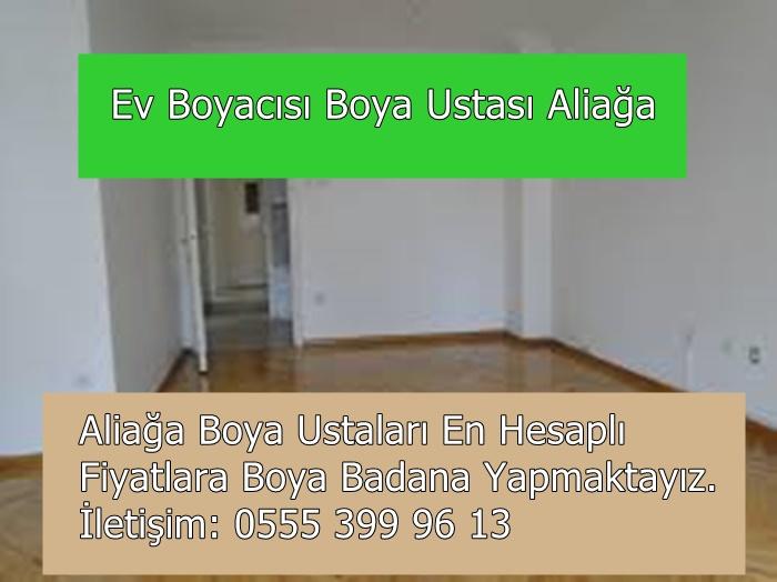 aliaga-boyaci-ustasi